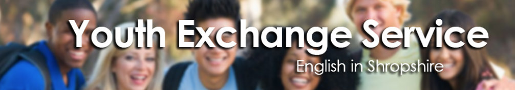 Youth Exchange Services